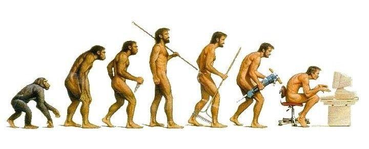 evolution-posture